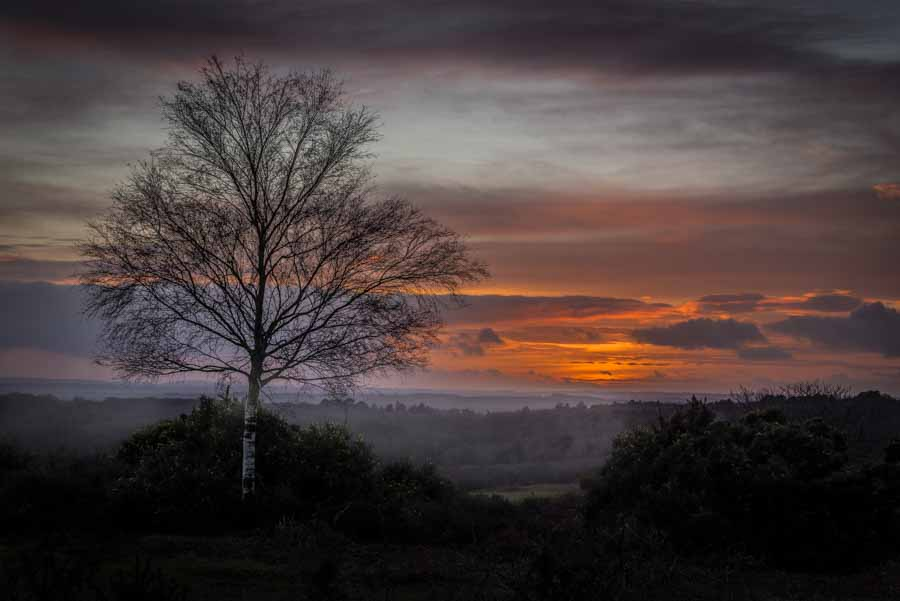 Picture of the sunset at Picket Post in the New Forest