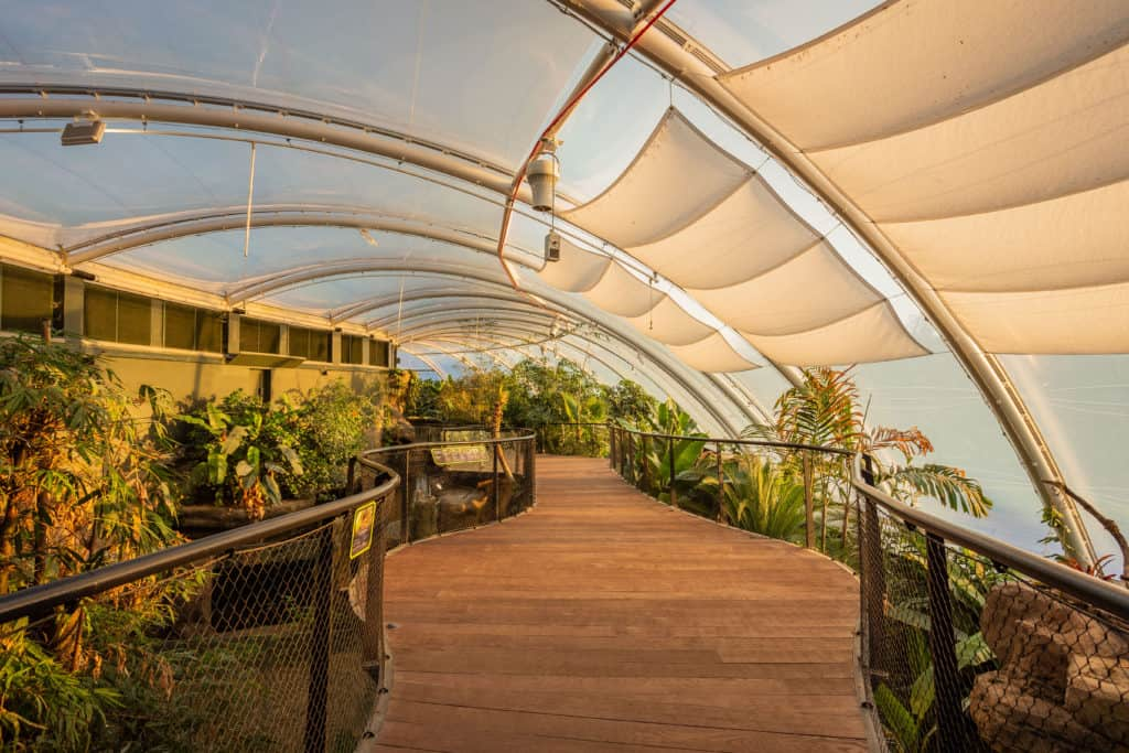The New Tropical House at Marwell Zoo